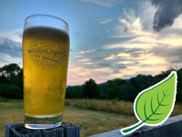 Polyculture Brewing Craft Beer